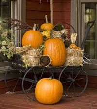 Cute display...The Pumpkin Patch