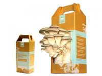 {Gifts for Cooks} Set of 2 Mushroom Kits :: Back to the Roots Mushroom Kit via