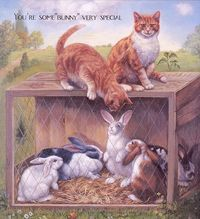 Cats and rabbits.
