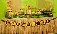 Dora the Explorer Kid Birthday Party