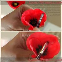 Gum paste poppy tutorial (via lovelytutorials.com).