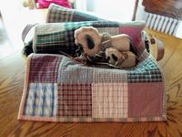 Mad About Plaid Quilted Table Runner / Topper