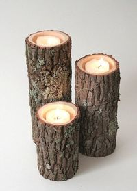 Tree Branch Candle Holders. Would make a cute centerpiece.