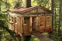 treehouses in WA