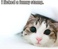 That wasn't a stamp...