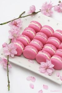 How to master the French macaron {Recipe}