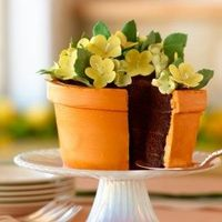 How to make a pot of flowers cake.
