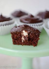 The BEST Chocolate Cupcakes filled with Cinnamon Whipped Cream!