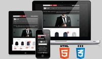 Responsive eCommerce WordPress