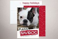Fleas Navidog holiday card by Pistols for minted.com