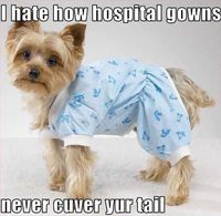 Hospital gowns #healthcare #humor