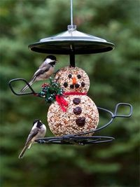 Snowman Seed Cylinder & Feeder Combo, perfect for the upcoming winter season! at Wild Birds Unlimited