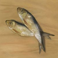 http://www.artisticrealism.com/paintings/salted-fish-oil-painting.jpg