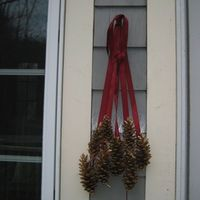Sprayed Gold Pine Cones and Ribbon.. pretty :)