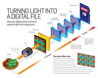 Cheat Sheet Friday: how your digital camera turns light into an image | Digital Camera World