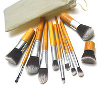 11Pcs Special Cosmetic Brush with Free Case