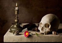 A candle, a book, a flower and a skull
