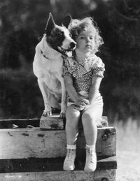 Shirley Temple & dog